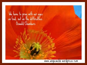 orange flower oswald chambers