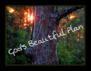 God's Beautiful Plan